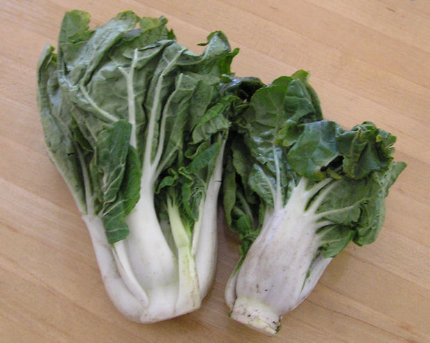 Pac Choi -Jazz up your next stir-fry with these tender, crisp leaves of goodness. Sold in bags of 8 oz. each.