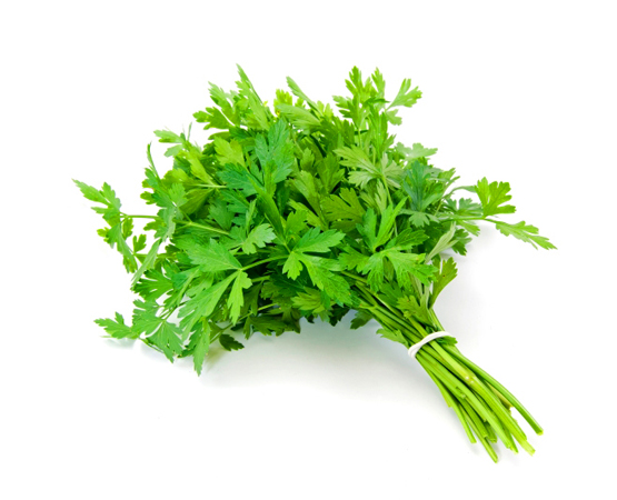 Parsley -Delicious parsley, everyone's favorite garnish. Green up your plates & sauces. $4/ 2oz bag