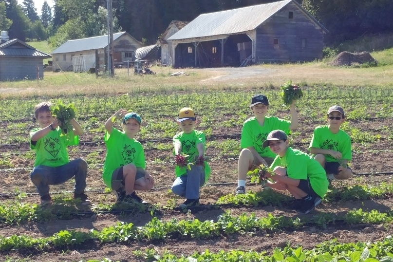 Cub Scouts in the radishes.jpg