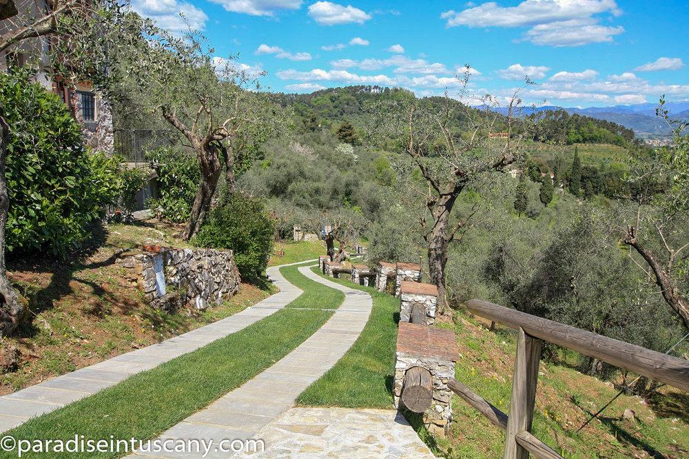 Villa del Cardinale: The driveway