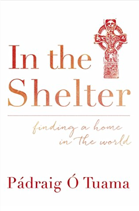 Hodder & Stoughton cover for 'In the Shelter'.