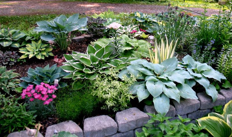 Al's Gardens