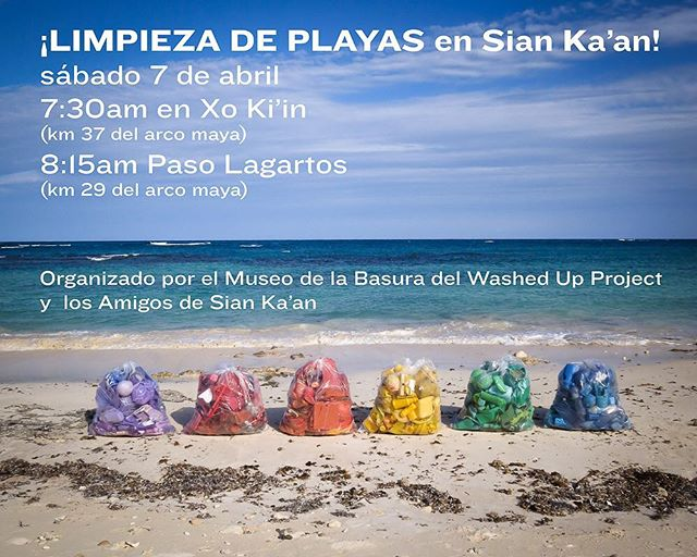 Limpieza de playas! Beach clean tomorrow for the Museo de la Basura. Bring your own water bottle. Organized in collaboration with los @amigosdesiankaan. Join us! #washedupproject