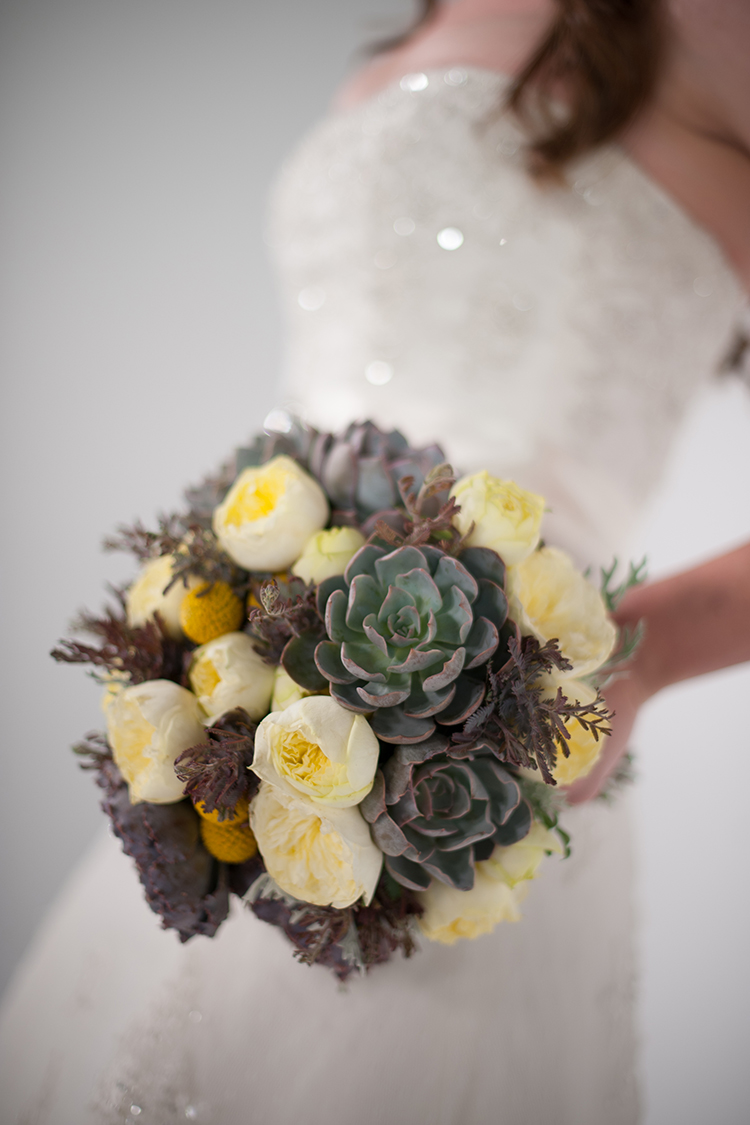 Hand-tied bridal bouquet by wedding florist Floral Verde in Cincinnati, Ohio, with acacia, echeveria shaviana 'Truffles', echeveria 'Orion', dusty miller, craspedia, and Antique Romantica garden spray roses. Photo by  The R2 Studio .