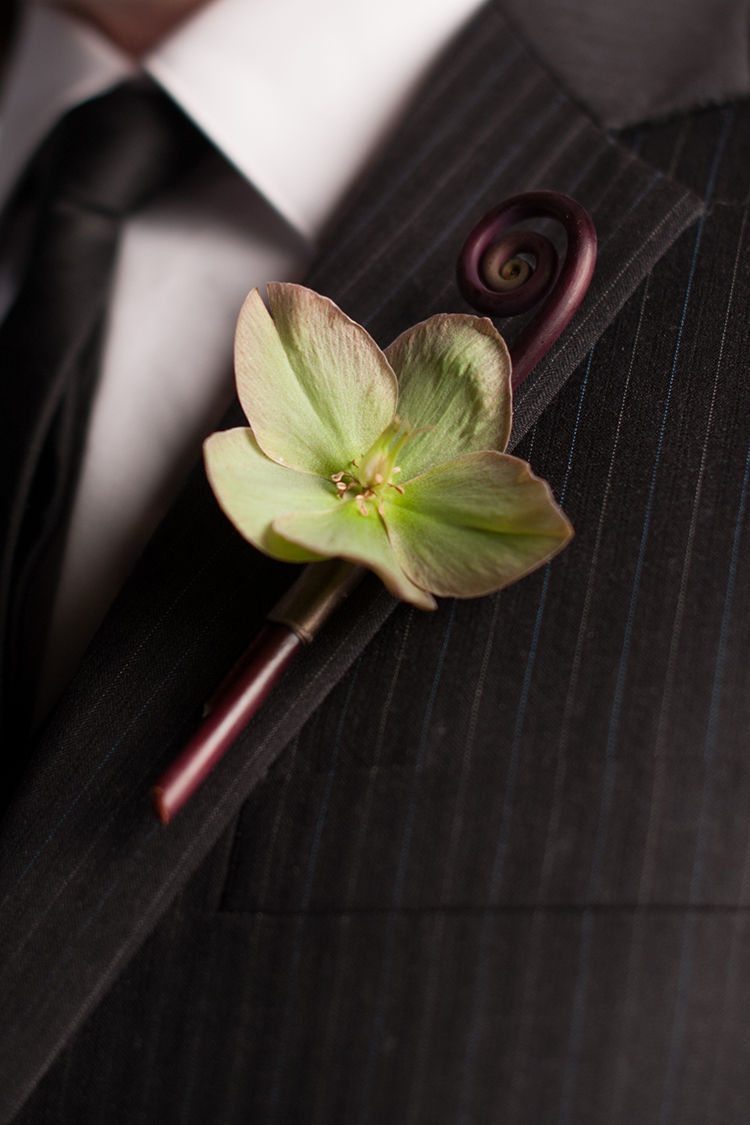 Boutonniere with a pink/green/beige hellebore and a uhule fern curl. Flowers by Cincinnati wedding florist Floral Verde.