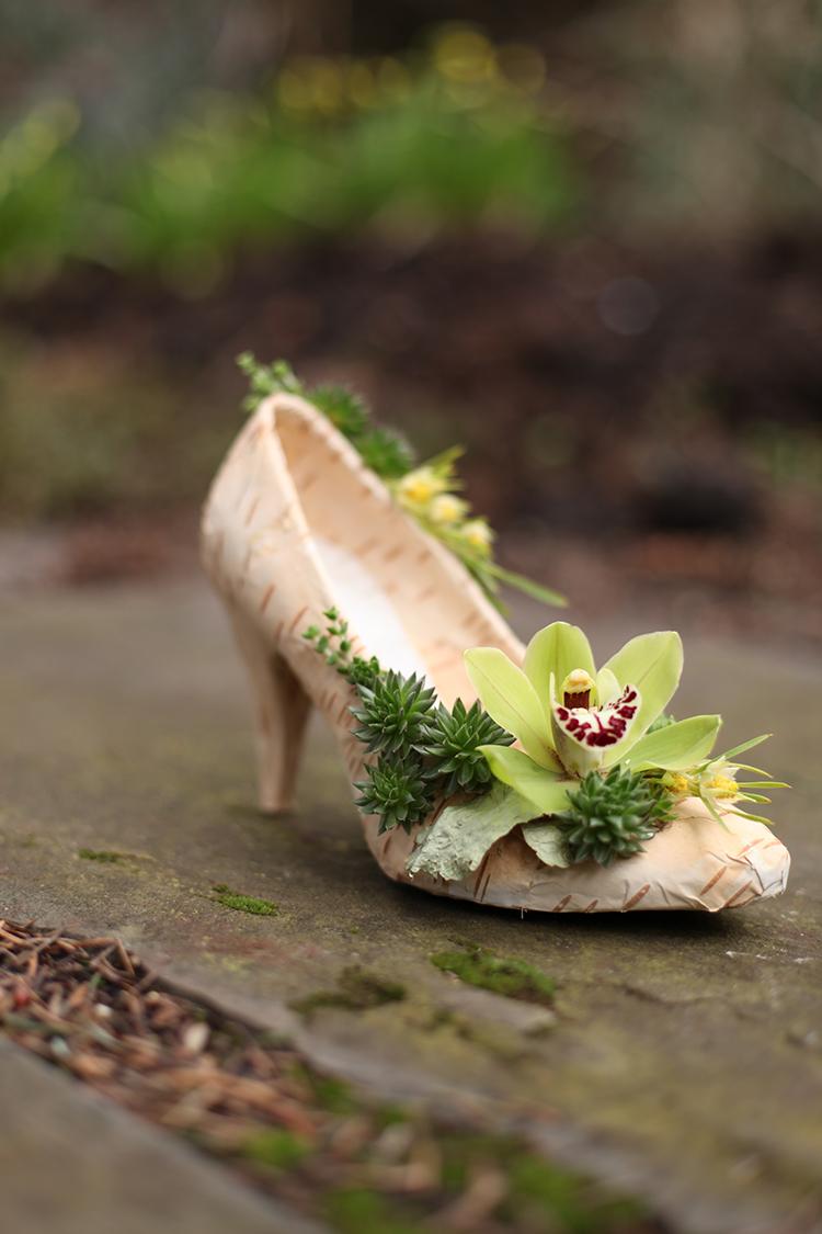Floral shoe with birch bark, succulents, mini crassula, mini leucadendron, and a mini green cymbidium orchid. By Cincinnati wedding florist Floral Verde.