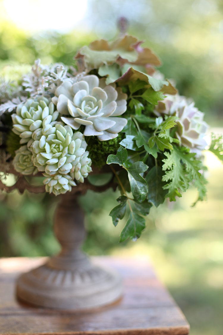 Centerpiece with mint green succulents, Uhule fern curl, Heuchera 'Vienna', Heuchera 'Caramel', Echeveria 'Lola', green hydrangea, Heuchera 'Lime Rickey', grape ivy, scented geranium, Green Trick dianthus, green trachelium, Echeveria 'Tippy', Echeveria 'Lucita' Echeveria derenbergii 'Painted Lady', Kalanchoe tomentosa, Artemisia 'Powis Castle' and dusty miller, by Floral Verde LLC in Cincinnati, OH.