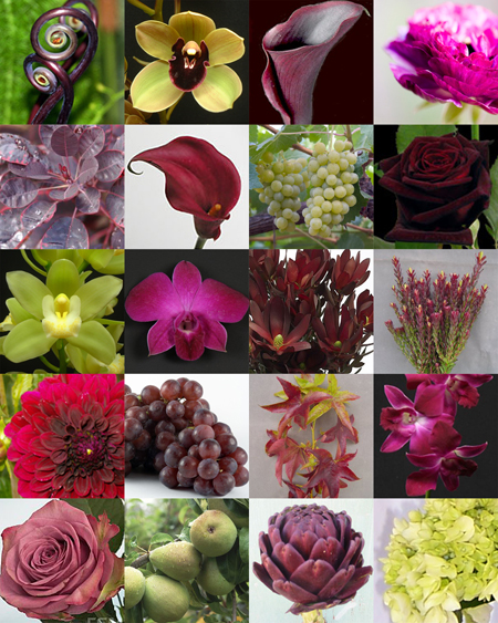 floral palette combining plum, burgundy, red, fuchsia and chartreuse
