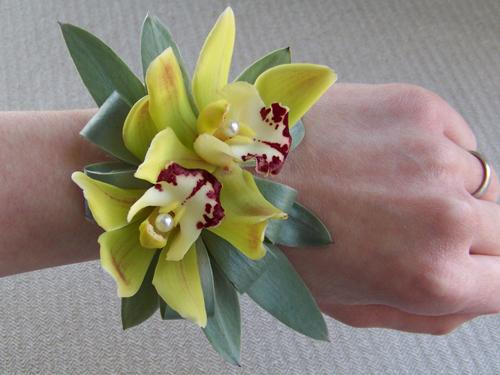 Wrist corsage with silver tree foliage and green mini cymbidiums
