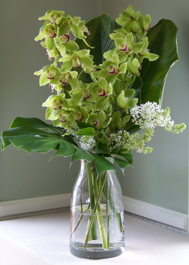 36 inch tall arrangement with cymbidium orchids, lilacs, jumbo calathea leaves and monstera foliage