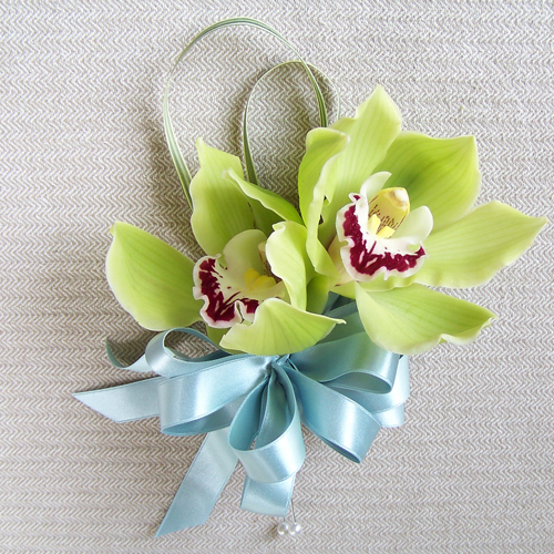 Mother's Day corsage with green cymbidium orchids and variegated lily grass finished with a blue bow.