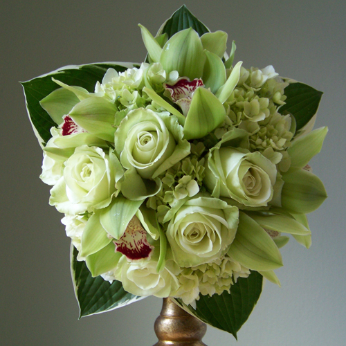 bridesmaid bouquet with hydrangea, Green Tea roses, cymbidium orchids and hosta foliage