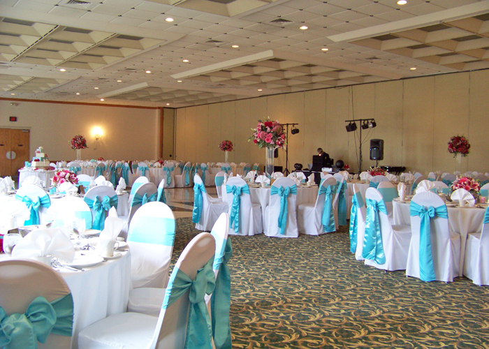Tiffany blue and pink reception at the Italian American Center in Livonia