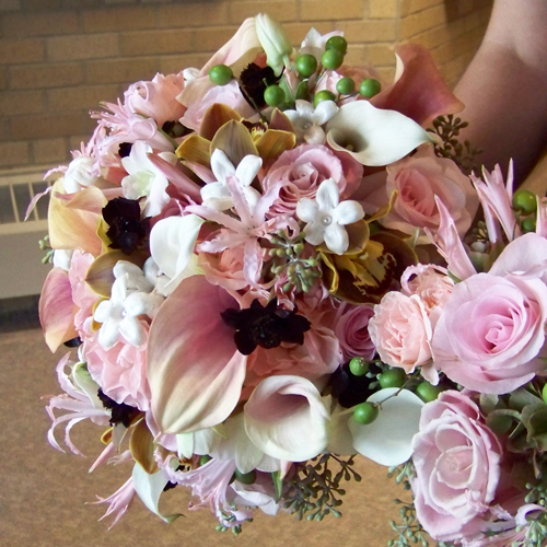 bridal bouquet with chocolate cosmos, Tokomaru Coca Cola mini cymbidiums, Charming Unique and Sweet Akito roses, blush and white mini callas, Dali spray roses, antique hydrangea, blush nerine lilies, Marco Polo dendrobiums, stephanotis, seeded eucalyptus and china berries