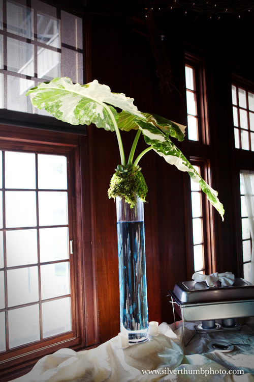 tall buffet table arrangements with alocasia leaves, succulents, and sheet moss
