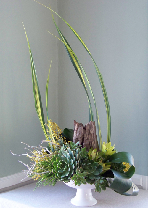 arrangement with manzanita branches, a reclaimed wood stump, succulents, aspidistra, berzelia, leucadendron, acacia, and flax in a ceramic pedestal bowl