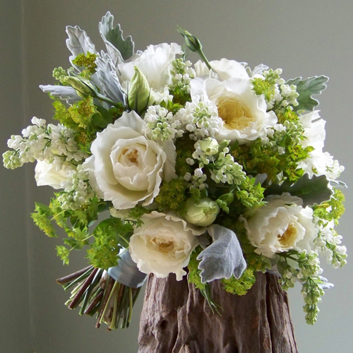 "bridal bouquet with ""Patience"" David Austin garden roses, white lisianthus, white lilac, bupleurum and dusty miller"