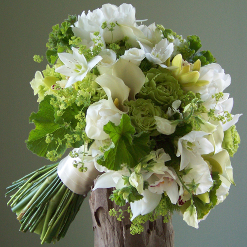Bridal Bouquet with Eucharis lilies, ivory mini callas, white peonies, white sweet peas, white sweetheart roses, white and green mini cymbidiums, green hydrangea, Super Green roses, Green Trick dianthus, alchemilla, and scented geranium