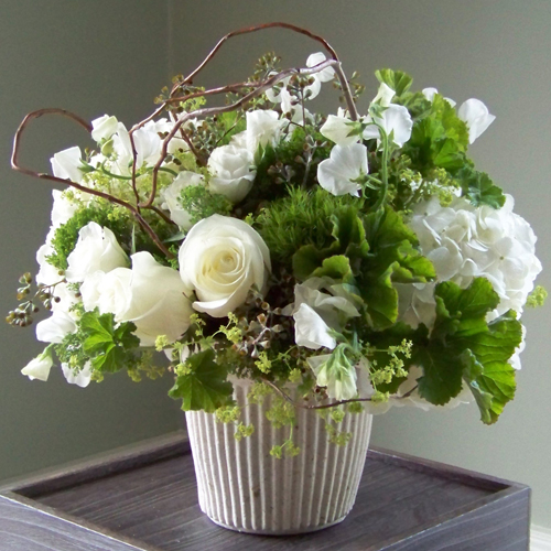 Centerpiece with white hydrangea, Polar Star roses, white sweet peas, white sweetheart roses, Green Trick dianthus, Jade trachellium, alchemilla, scented geranium, seeded eucalyptus and curly willow branches, in a recycled mache urn