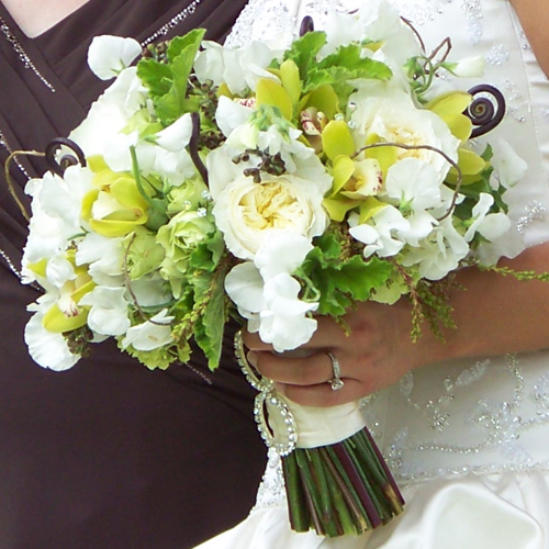 bridal bouquet with sweet peas, Patience garden roses, fern curls, curly willow, pieris buds, green hydrangea, green mini cymbidiums, scented geranium, seeded eucalyptus, Super Green roses, green minou spray roses, and Swarovski crystal accents