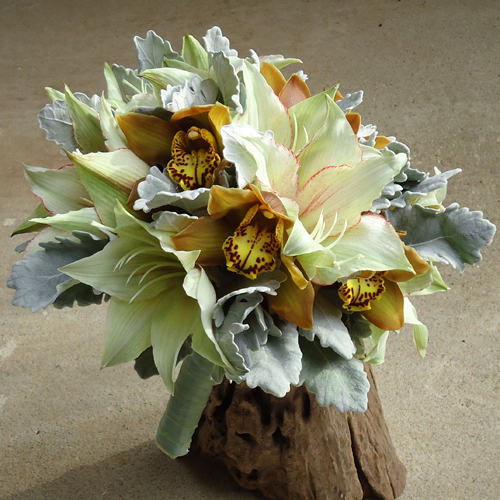 hand tied bouquet with amaryllis, La Vie Carina cymbidiums and dusty miller