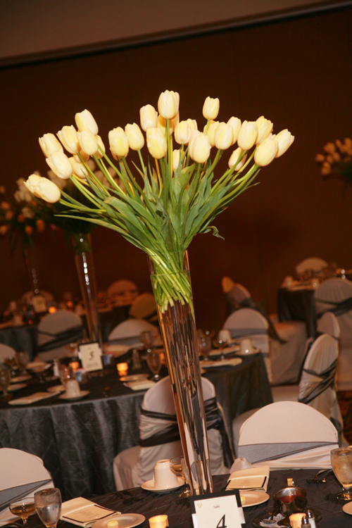 the centerpieces were tall pilsner vases filled with ivory Maureen French tulips