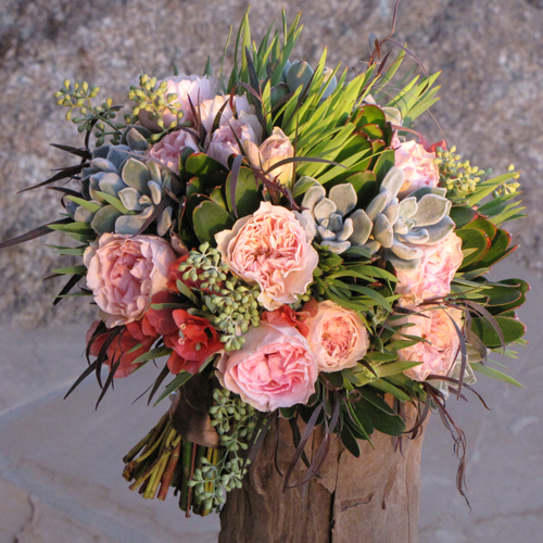 hand-tied bouquet with pink bougainvillea, Juliette Drouet garden roses, Echeveria 'frosty,' seeded eucalyptus, green leucadendron and agonis
