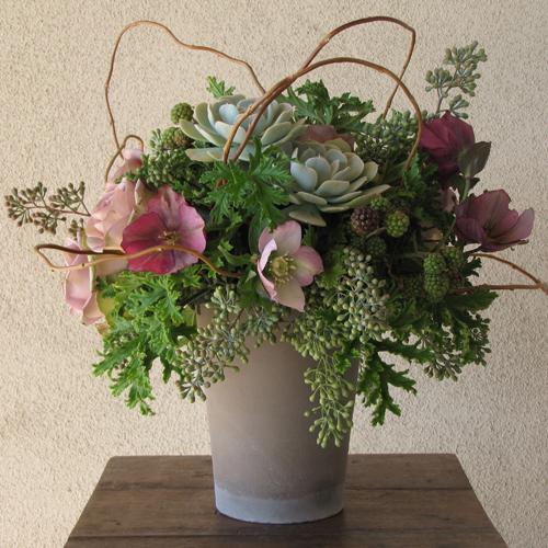 Garden style centerpiece with lavender hellebores, Amnesia roses, blackberries, Echeveria 'Lucita', seeded eucalyptus, scented geranium, and curly willow in a brown clay pot