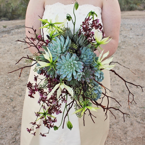 cascading bridal bouquet with natural manzanita, uluhe fern curls, Oncidium Sharry Baby, white gloriosa lilies, Graptoveria 'Bella', Pachyveria glauca 'Little Jewel', Kalanchoe tomentosa, Echeveria 'Mazarine', Echeveria 'Violet Queen', Echeveria runyonii 'Topsy Turvy', eucalyptus bells, seeded eucalyptus, wooley bush, and Haworthia fasciata for a ceremony on South Mountian in Phoenix.