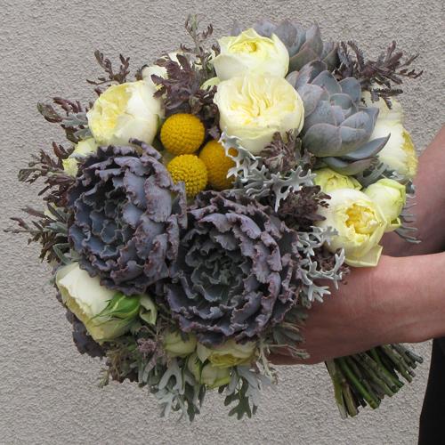 Hand-tied bridal bouquet with acacia, echeveria shaviana 'Truffles', echeveria 'Orion', dusty miller, craspedia, and Antique Romantica garden spray roses