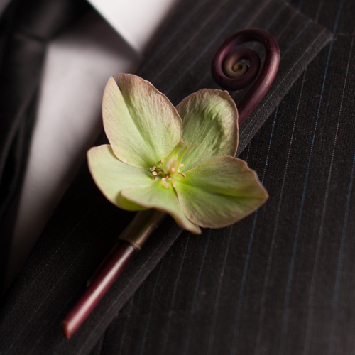 Boutonniere with a single pink-edged green hellebore, accented with a fiddlehead fern curl. Photo by The R2 Studio.