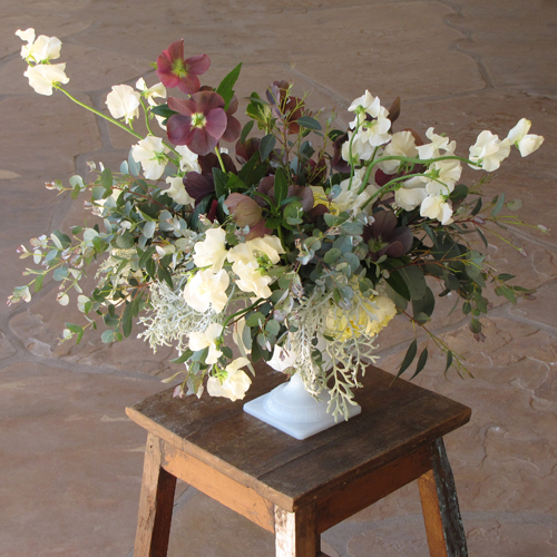 centerpiece with antique purple hellebores, gunnii eucalyptus, dusty miller, Antique Romantica garden spray roses and ivory Japanese sweet pea, arranged in a vintage milk glass urn