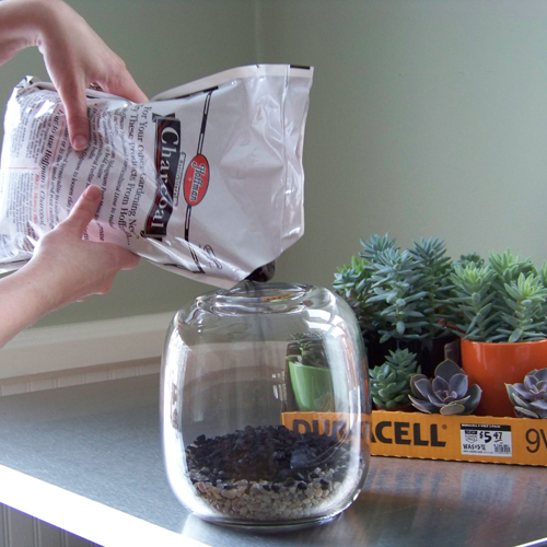 add horticultural charcoal to keep your terrarium smelling fresh