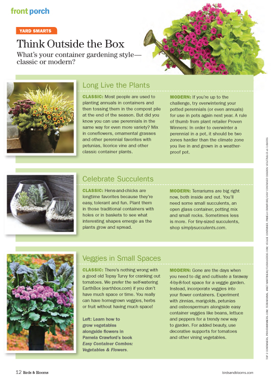 Floral Verde's succulent terrarium featured in Birds & Blooms magazine