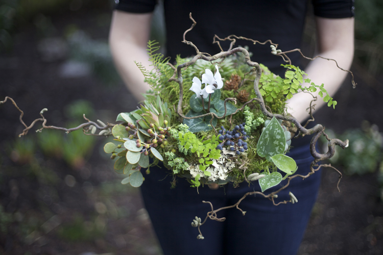 woodland bridal bouquet with contorted filbert branches, privet berries, acacia foliage, pinecones, white cyclamen, green leucadendron, Philodendron 'Silver Cloud', sea star fern, maiden hair fern, seeded eucalyptus, Graptoveria 'Silver Star', Crassula rupestris subsp. marnieriana, sponge mushrooms, lichen and moss, with a eucalyptus and river birch bark handle treatment