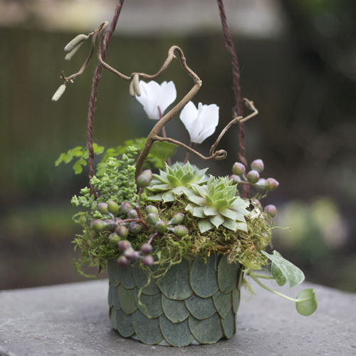 woodland flower girl basket with contorted filbert branches, white cyclamen, Philodendron 'Silver Cloud', maiden hair fern, seeded eucalyptus, aeonium, Crassula rupestris subsp. marnieriana, lichen and moss, in a eucalyptus leaf basket