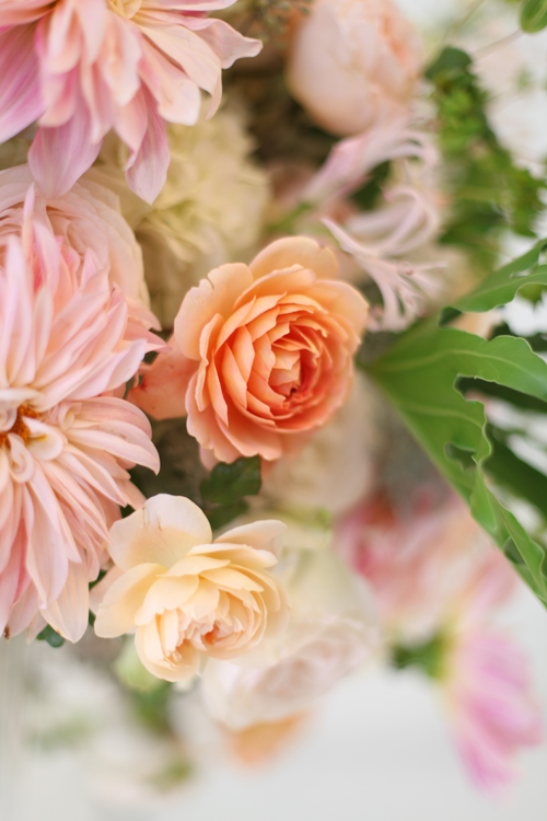 Close up of a Carding Mill garden rose, an Ambridge garden rose, and Café au Lait dahlias, by Floral Verde LLC, Cincinnati Ohio wedding flowers