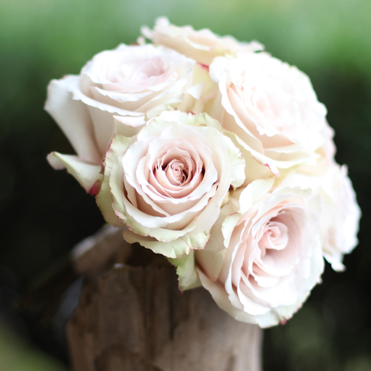 Simple bridesmaid bouquet made of Quicksand Roses