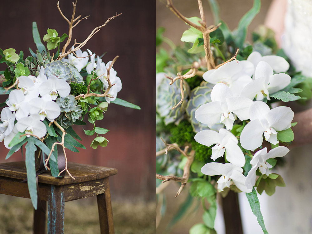 Cascading bridal bouquet with sandblasted manzanita branches, white phalaenopsis orchids, green hellebores, green trachelium, Blue Star fern, Kalanchoe tomentosa and Echeveria lilacina, accented with fawn satin ribbon.  Photo by Leah Barry Photograpy, flowers by Floral Verde LLC Cincinnati, Ohio.