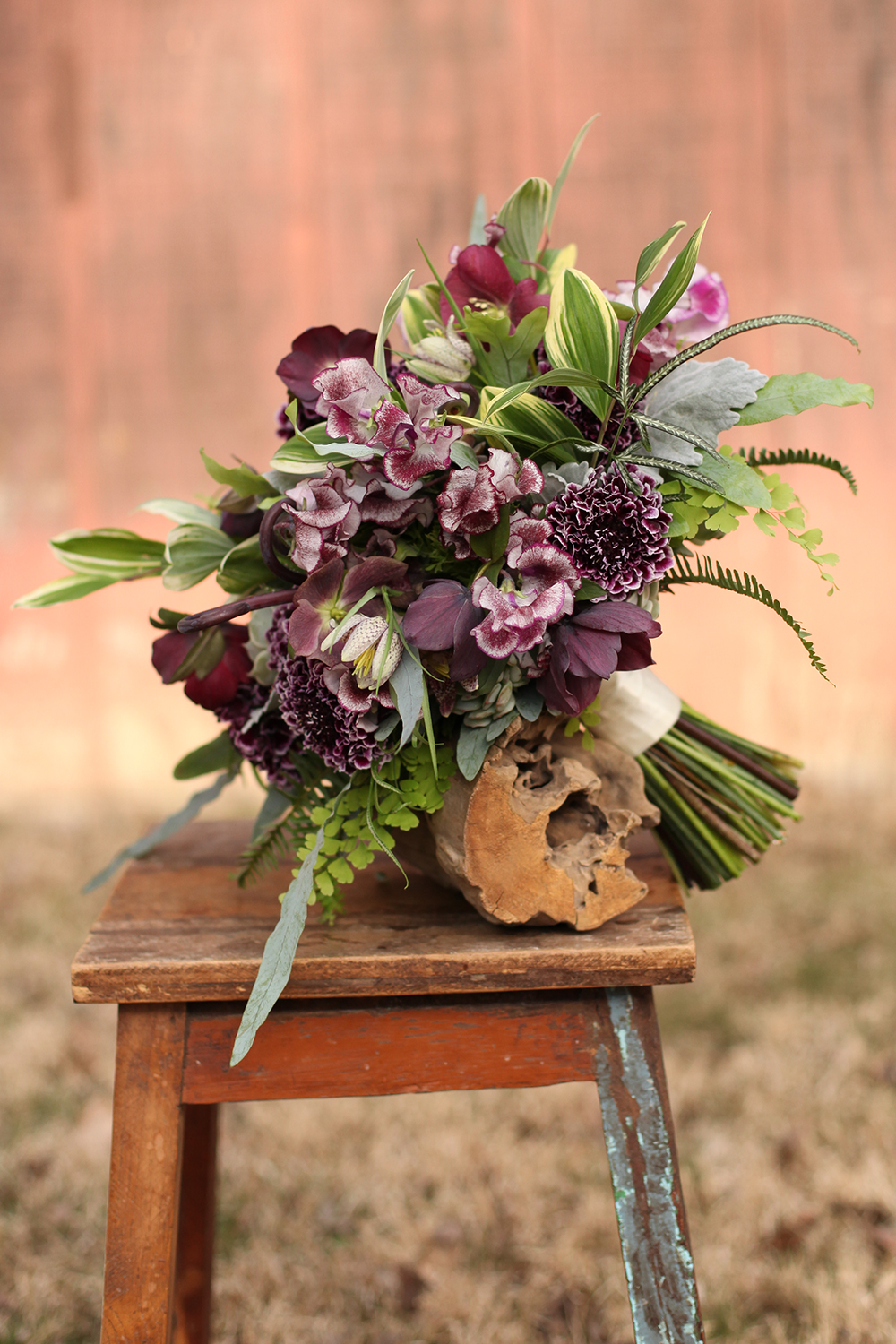 Woodland inspired bridal bouquet by Floral Verde LLC in Cincinnati, Ohio, with uhule fern curls, Pretty Purple Japanese scabiosa, Wiltshire Ripple sweet pea, Fritillaria meleagris, Echeveria Lola, Echeveria Painted Lady, dusty miller, Blue Star fern, Haworthia fasciata, Silver Lace fern, green ranunculus, Kimberly Queen fern, variegated Polygonatum odoratum variety pluriflorum and Maidenhair fern.