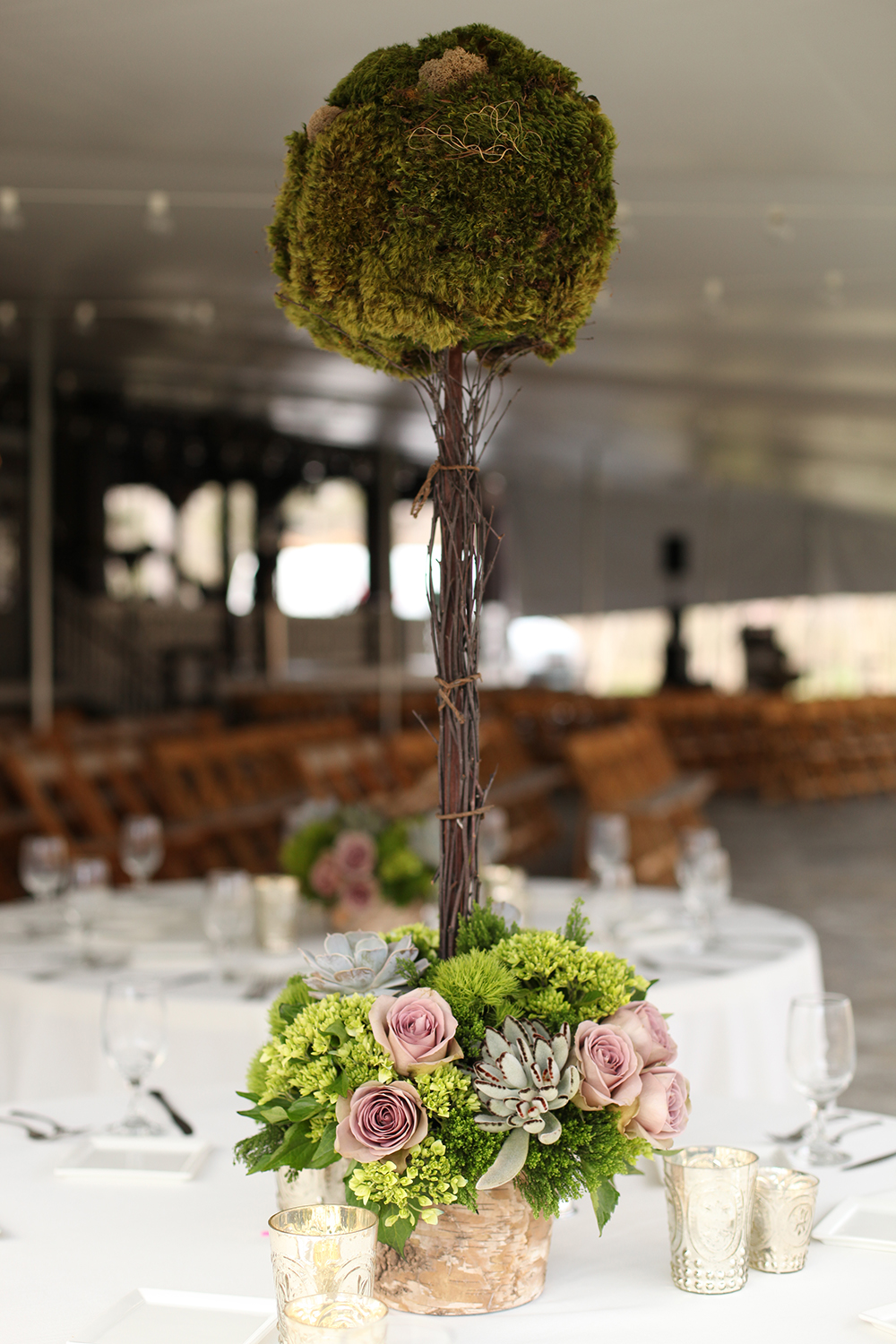 Tall moss topiary centerpieces at Krippendorf Lodge, by Floral Verde LLC in Cincinnati, Ohio, with mood moss, birch branches, succulents, Amnesia roses, Echeveria lilacina, Kalanchoe tomentosa, green hydrangea, Green Trick dianthus and green trachelium in a birch bark pot.