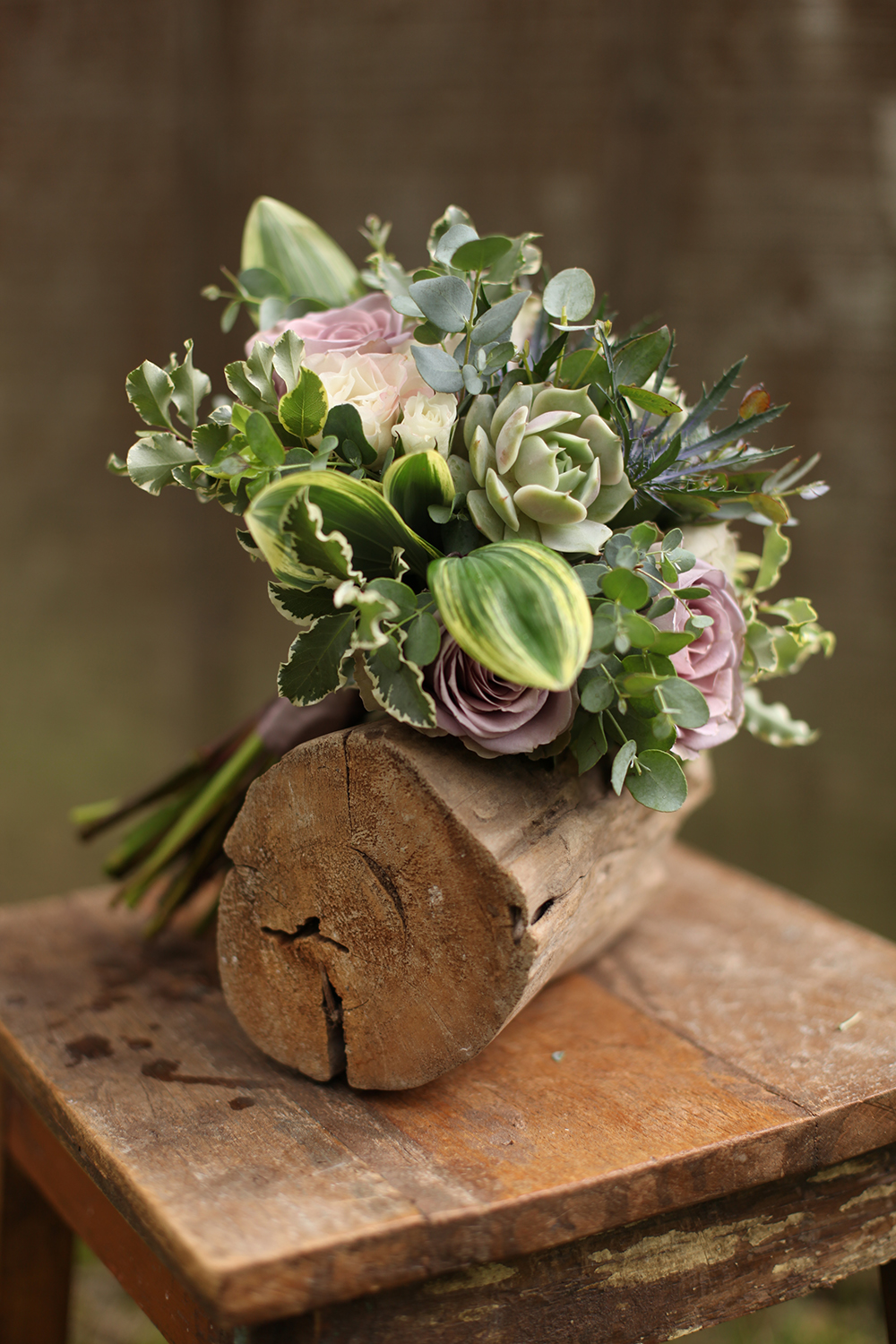 mother of the bride bouquet by wedding florist Floral Verde LLC in Cincinnati, Ohio; with succulents, Amnesia roses, Echeveria 'Lola', thistle, White Majolica spray roses, gunnii eucalyptus, mini variegated pittosporum and variegated Solomon's Seal.