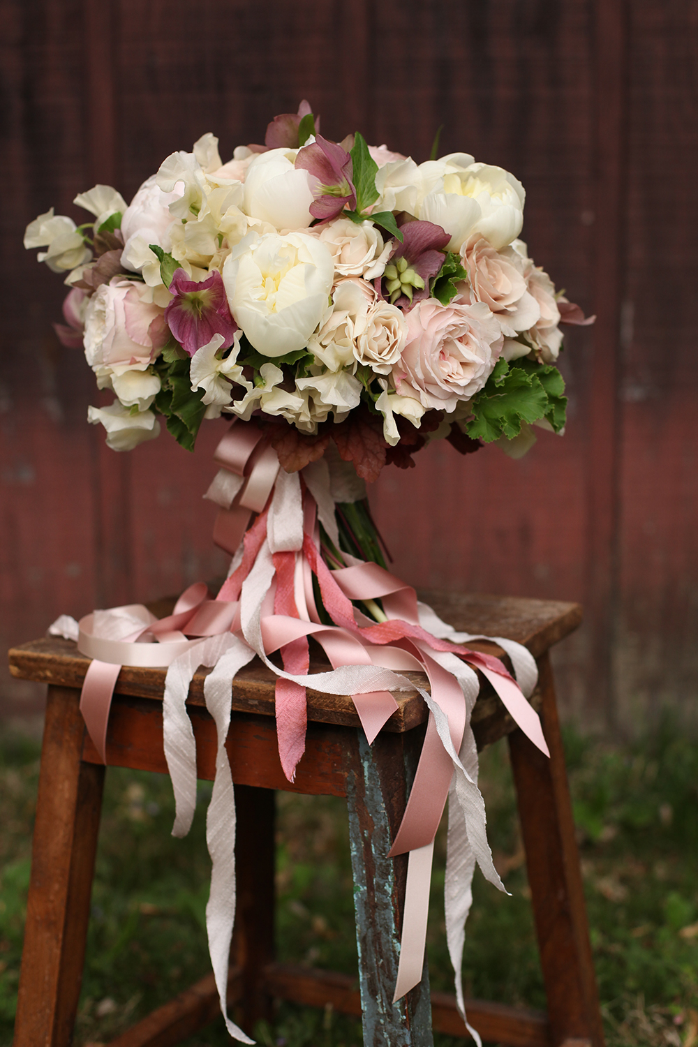 bridal bouquet by wedding florist Floral Verde LLC in Cincinnati, Ohio; with pink hellebores, Brillant Stars Bridal spray roses, Keira garden roses, White Majolica spray roses, Quicksand roses, ivory Japanese sweet pea, white peonies, Heuchera 'Vienna' and scented geranium, with cascading silk and satin ribbons in blush.