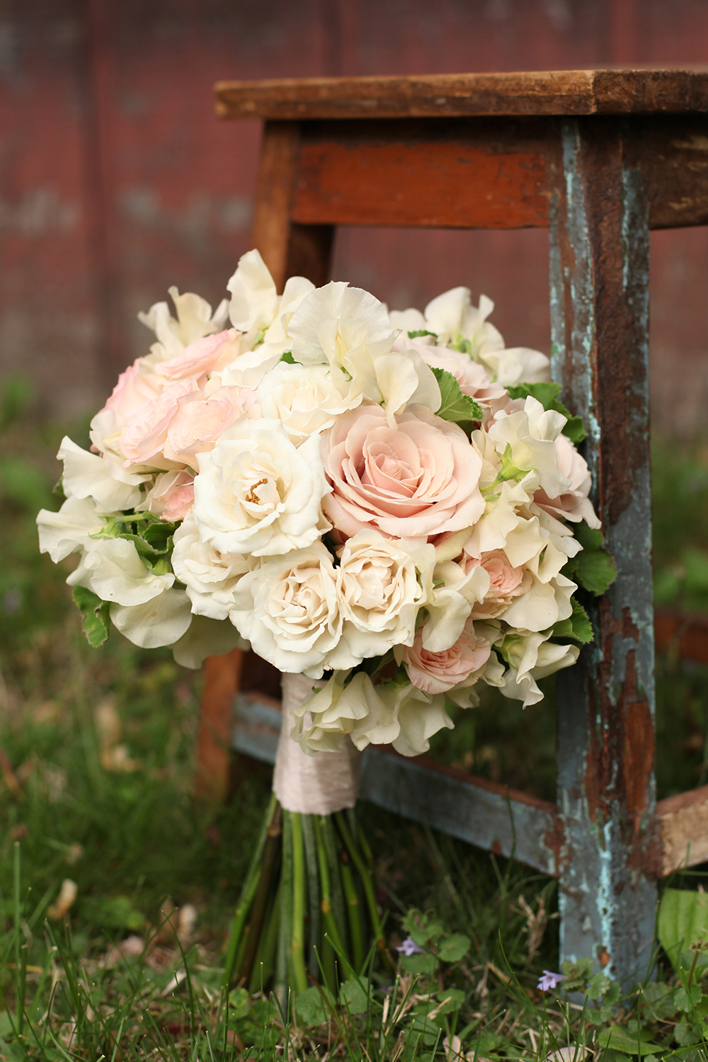 bridesmaid bouquet by wedding florist Floral Verde LLC in Cincinnati, Ohio; with Brillant Stars Bridal spray roses, Keira garden roses, White Majolica spray roses, Quicksand roses, ivory Japanese sweet pea and scented geranium