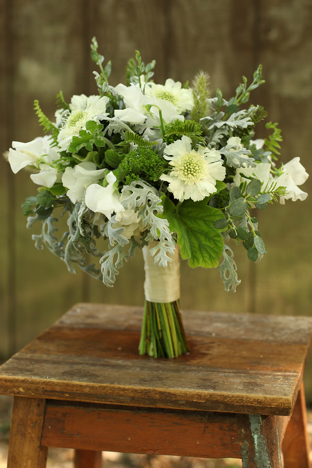 bridesmaid bouquet by wedding florist Floral Verde LLC in Cincinnati, Ohio; with white scabiosa, white Japanese sweet pea, bunny tail grass, Kimberly Queen fern, Jade trachelium, scented geranium, gunnii eucalyptus and dusty miller.