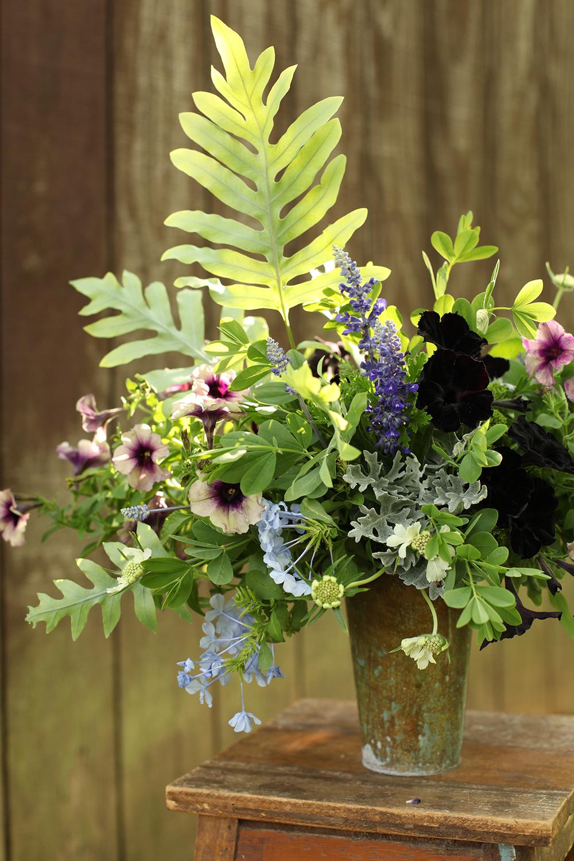 centerpiece by florist Floral Verde LLC in Cincinnati, Ohio; with Petunia 'Black Mamba', Petunia 'Twilight Blue', Salvia 'Victoria Blue', Plumbago 'Escapade Blue', Baptisia australis, Blue Star fern, dusty miller, green trachelium, Scented Geranium 'Citronella' and white scabiosa.