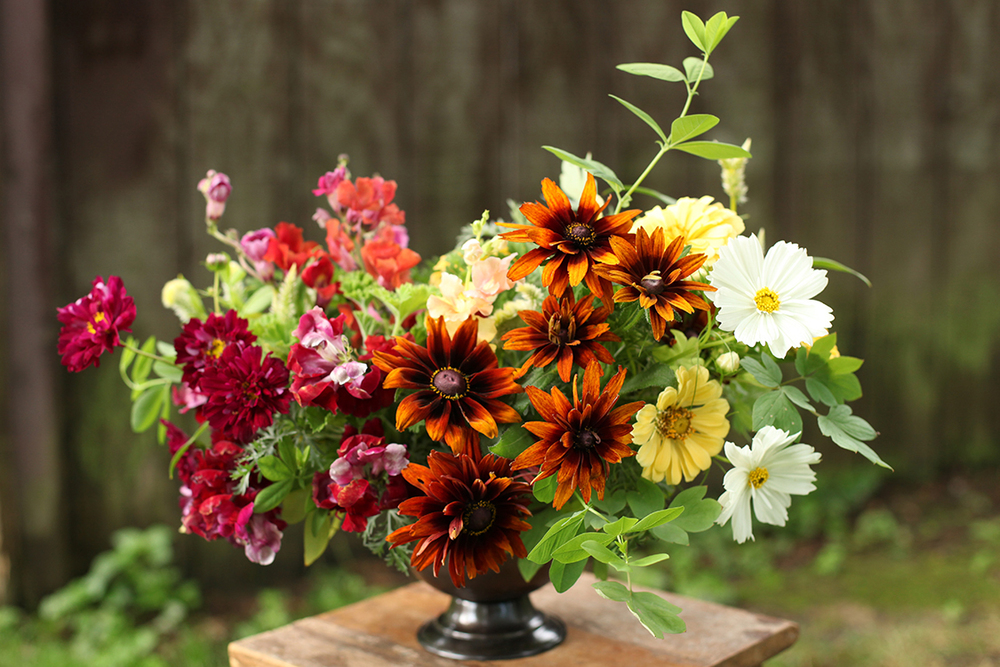 Centerpiece by Cincinnati wedding florist Floral Verde LLC. Centerpiece contains locally grown white cosmos, yellow zinnias, brown rudbeckia, chantilly snapdragons, scented geranium, baptisia and bleeding heart foliage.