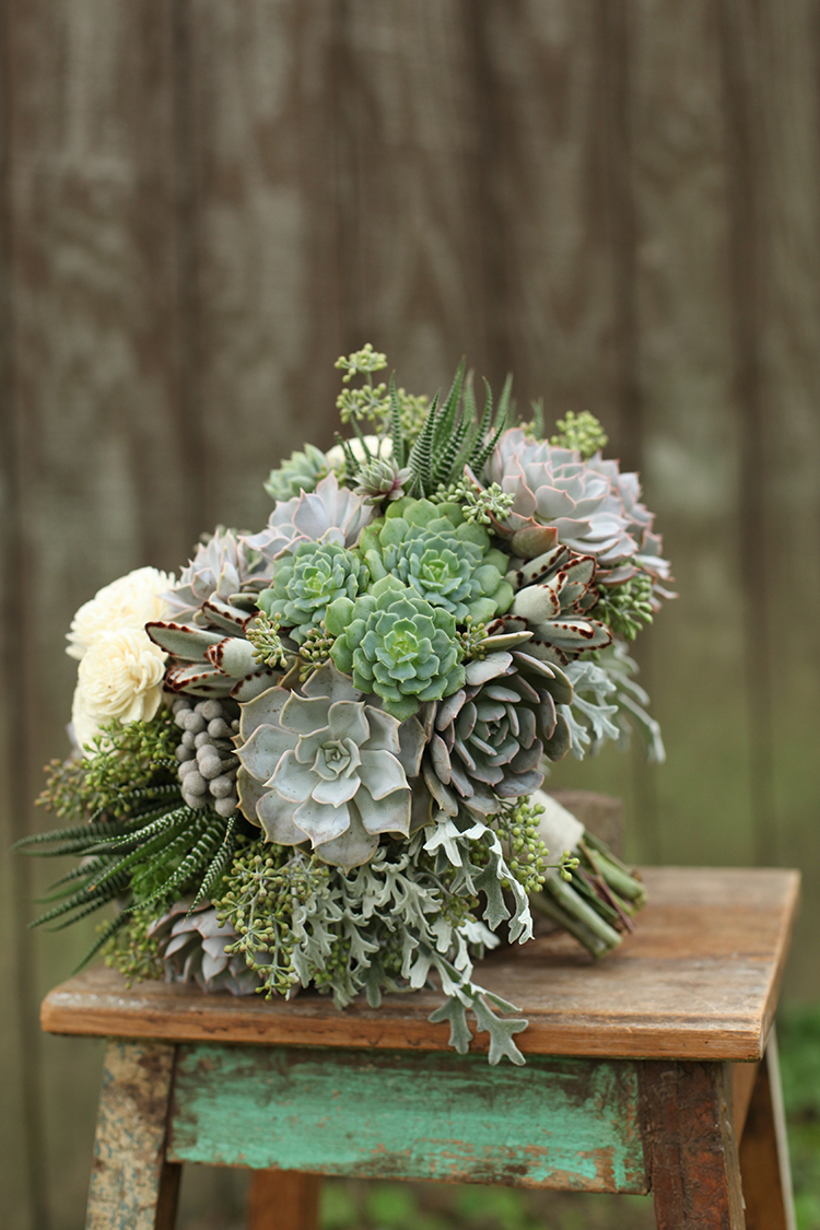 Succulent bridal bouquet by Cincinnati wedding florist Floral Verde LLC. Bouquet includes Echeveria lilicina, Echeveria dondo, Kalanchoe tomentosa, Haworthia fasciata, brunia, dusty miller, seeded eucalyptus and sola flowers.