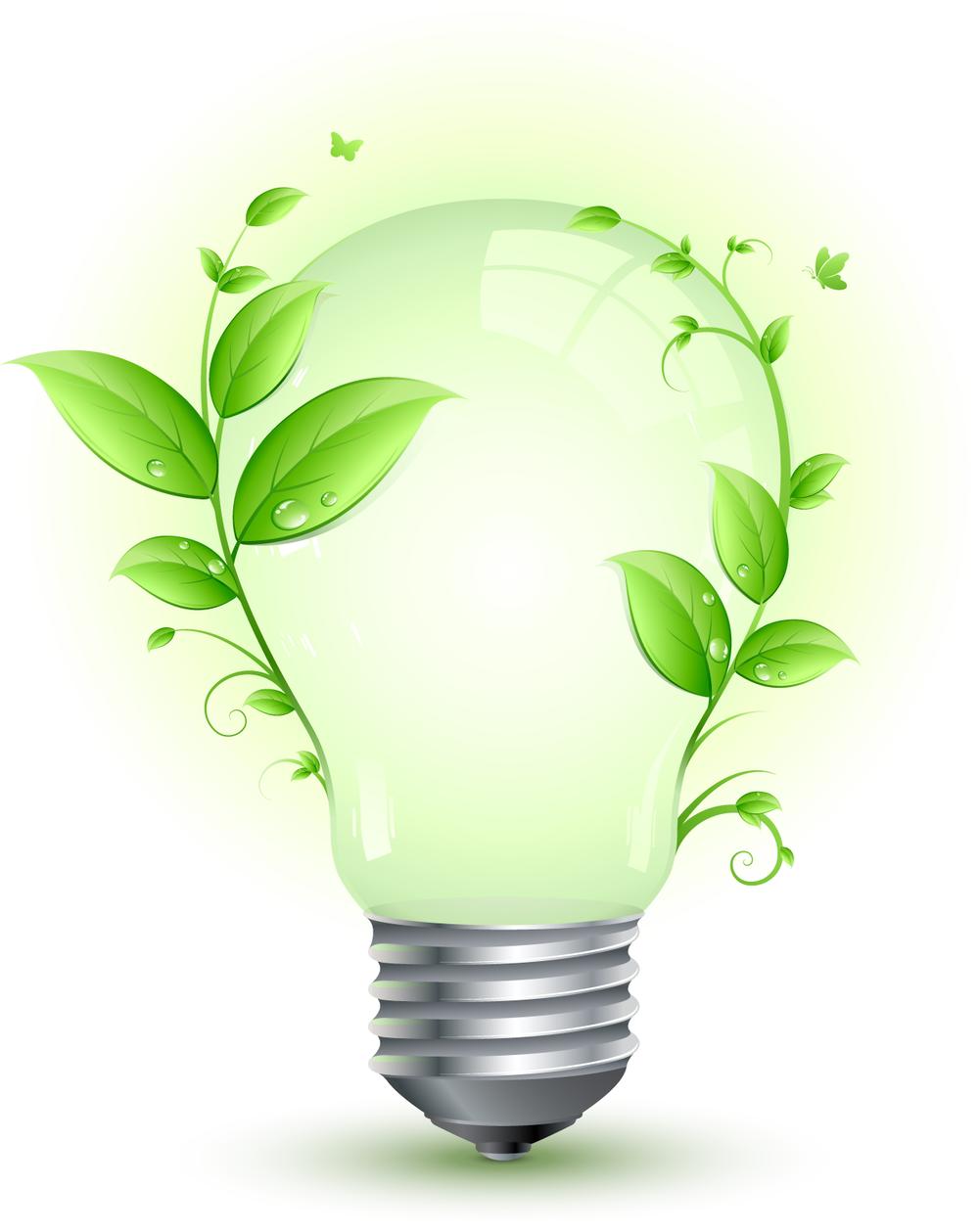 Energy Efficiency. Energy Efficiency   Chelmsford Local