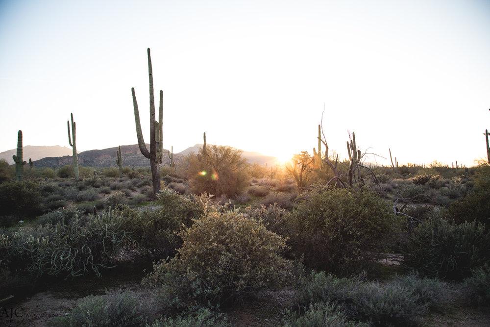 Desert sunsets, so warm, so inviting.